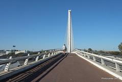 Puente del Alamillo (Landahlauts) Tags: sevilla seville andalucia andalusia andalusien sville andalousie andalusie siviglia  andaluzia puentedelalamillo rioguadalquivir andaluzja sewilla andaluzio    endls      endulus        andalouzia andalusiya   ishbiliya fujifilmxpro1 fujifilmfujinonxf35mmf14r  nf endls andalusi capitaldeandalucia
