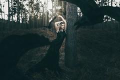 Queen of the crows (adambird_) Tags: bird art beauty fairytale forest dark flying woods dress princess designer fineart feather surreal queen explore story fairy crow conceptual raven narrative timwalker kathrynlove adambird adambirdphotography
