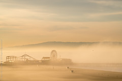 Pier in the Fog (Kurt Lawson) Tags: ocean california morning bird tower beach fog trash sunrise pier losangeles sand waves pacific santamonica lifeguard ferriswheel cans palosverdes silhoutetterollercoaster