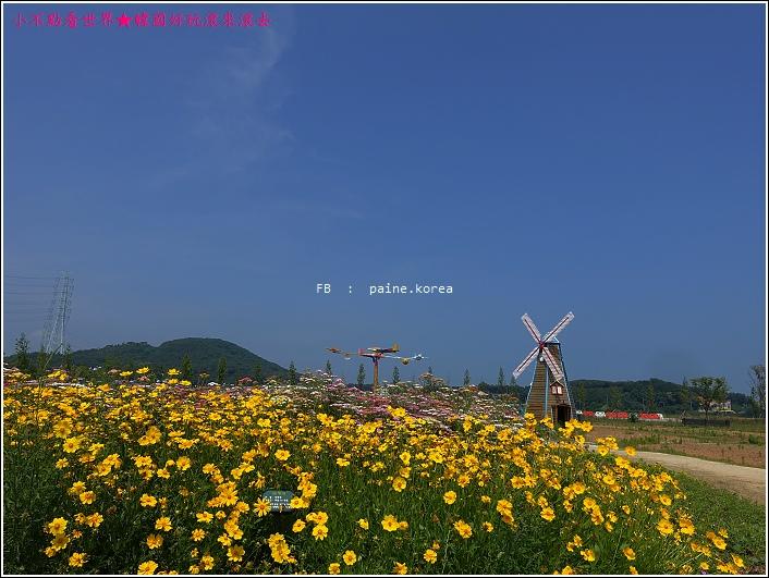 大阜島海邊香氣公園 (53).JPG
