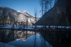 DSC_0635-10 (renrenskyy) Tags: winter snow reflection reflections yosemite nationalparks