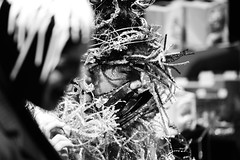 DSC_9291 (Andrew Paterson) Tags: toronto 30 ball blackwhite jan harbourfront mirrorball mirrow 2016 houseofnuance mothertroublenuance