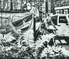 4C (Paul B0udreau) Tags: people toronto canada water fountain lamp droplets nikon distillerydistrict historic bicyclist ripples peanutbutter ribbet photomatix nikkor1855mm duplicatetag bougeathisfinesthour