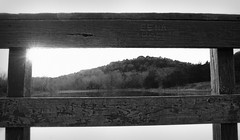 05 - Landscape (Black and White) (ethnosax) Tags: morning blackandwhite bw sunrise landscape outdoors grey dawn dallas texas outdoor tx gray scenic hike hills trail frame framing railing shelter overlook cedarhill mountaincreek cedarridgenaturepreserve cattailpond dogwood52 dogwoodchallenge dogwoodweek5