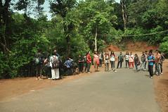 Let the trek begin (mansi-shah) Tags: rainforest farming coorg madikeri forestecology mansishah rainforestretreat jenniferpierce ceptsummerschool