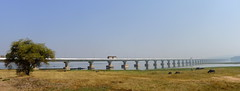 Thepsuda Bridge.. crossing Lam Pau Dam.. Sahasakhan.. Kalasin province,  Thailand (larryoien) Tags: bridge panorama thailand lumix panasonic waterbuffalo digitalcompact lx5 sugarcanetrucks travellight totallythailand lampaudam