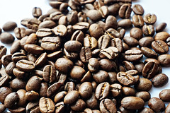 What did one coffee say to the other coffee? ....Where ya bean? (katerha) Tags: coffee joke brew coffeebeans macromonday brewtiful