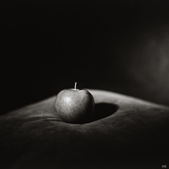 Der Apfel (*altglas*) Tags: bw 120 6x6 film apple monochrome analog zeiss mediumformat square 150 rodinal rodinal150 apfel fomapan100 superikonta mittelformat 53316