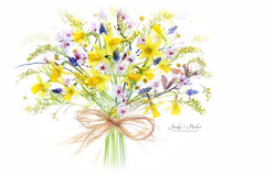 Spring Florals (Jacky Parker Floral Art) Tags: pink flowers display nopeople indoors whitebackground cherryblossom bouquet tied arrangement daffodils muscari narcissus selectivefocus naturephotography macrophotography floralart beautyinnature horizontalformat flowerphotography focusonforeground creativeedit spring2016