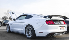 Mustang 5.0 (averagehitman) Tags: white color ford muscle modified enthusiast mustang tuner enkei desaturate rpf1