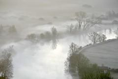 Airuno_6 (Riboli Alessandro) Tags: light rio fog alberi landscape nikon alba fiume natura nikkor sole nebbia atmosfera luce ai paesaggio lecco magia 80200 mattino foschia d700 airuno