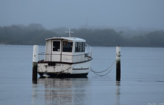 Misty morning at the waterfront (Merrillie) Tags: sea mist water misty fog boats dawn bay nikon scenery waterfront australia views nsw daybreak brisbanewater woywoy seaviews d5500 nswcentralcoast centralcoastnsw