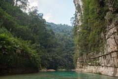 _DSC2860 (Jorge De Silva R) Tags: nature rio de la photo adventure venta caon chiapasmexico fotografiadenaturaleza