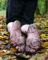 Autumn soles (Barefoot Adventurer) Tags: autumn texture nature leaves woodland walking toes soil barefoot barefeet connected anklet barefooted barfuss barefooting barefoothiking strongfeet barefooter baresoles leathersoles toughsoles wrinkledsoles callousedsoles earthsoles livingleather naturalsoles stainedsoles autumnsoles autumnbarefooting earthstainedsoles