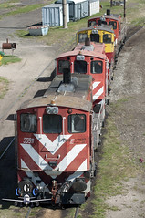 ING. WHITE YARD (claudiog.carbone) Tags: generalmotors emd ferrocarrilesargentinos ga8 gmemd ingwhite fepsa ferrocarrilgeneralroca patioingwhite