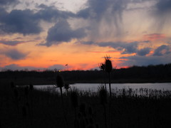 IMG_2138 (sjj62) Tags: sunset sky clouds lith s90 lakeinthehillsil