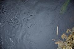 DSC_4679 [ps] - The Water Cycle (Anyhoo) Tags: uk water bike bicycle wheel stone river lost flow scotland stirling stonework debris forth cycle ripples wreck handlebars turbulence riverforth dumped stirlingbridge anyhoo photobyanyhoo