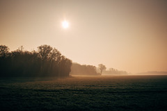 Campagne (GnondPomme) Tags: morning france fog sunrise landscape fuji country fujifilm normandie campagne fujinon brume matin eure xe1 payasage 500px ifttt