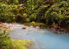 BIJAGUA, COSTA RICA - NP Volcan Tenorio/ , - - ..   (Miami Love 1) Tags: latinamerica nationalpark costarica latinoamerica centralamerica tenorio latinamerican parquenacional latinoamericano centroamerica centralamerican centroamericano costarican bijagua       costarricence
