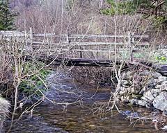 Wooden Bridge (Dave_Hilton) Tags: snowdonia northwales nikon247028 nikond610