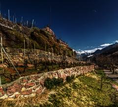 Terraced (Elliott Bignell) Tags: stone schweiz switzerland vineyard suisse terrace terraces ostschweiz walls svizzera stein wein weinberg walenstadt murg unterterzen steinwnde