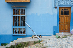 Cerro Alegre, Valparaso (silkylemur) Tags: chile street trip travel blue streets color latinamerica southamerica canon lens colorful zoom cyan streetphotography fullframe valparaso canoneos ef canoneflens cerroalegre canonlens canonef2880mmf3556ii regindevalparaso  efmount canonef2880mm basiclens strasenfotografie canoneos6d