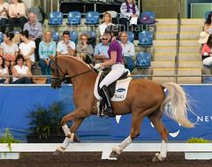 160409_2016_SydneyCDI_YH_Finals4247.jpg (FranzVenhaus) Tags: horses test sydney australia nsw judge newsouthwales aus equestrian riders dressage siec