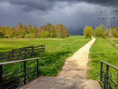 iPhone5 picture - Steinse Groen - Haastrecht (F. Berkelaar) Tags: nature nederland natuur nl landschaft landschap zuidholland haastrecht iphone5 steinsegroen polderstein gemeentekrimpenerwaard