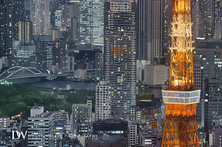 Tokyo Tower Cityscape