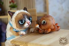 05 (rioky_angel) Tags: cute monster cat creativity toys furry handmade ooak fluffy fantasy clay octopus artdoll creature grumpy arttoy grumpycat toymaker polimerclay riokycreatures
