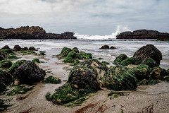 The Beach - Pacifica California (nicklaborde) Tags: california travel beach lumix coast us unitedstates pacific panasonic pch april pacifica pacificcoast 2015 500px gx7
