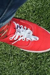 DSC_0517 (veekaay) Tags: new york nyc dog ny grass socks brooklyn photography spring nice shoes manhattan burger sunny sneakers cheeseburger sneaker vans 2016