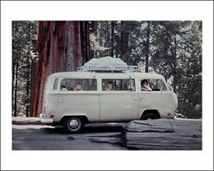 Vehicle Collection (6518) - Volkswagen (Steve Given) Tags: volkswagen automobile tour roadtrip tourists camper familycar motorvehicle