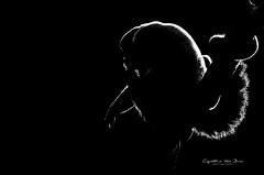 Brown woolly monkey at Apenheul Primate Park (Cynthia ten Bras) Tags: photography monkey wildlife sony 35 apenheul aap apeldoorn apen wildlifephotography wolaap sonyalpha apenheulprimatepark lagothrixlagotricha brownwoollymonkey sonyalpha350
