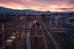 Morning red: Waiting for next service delivery (jaeschol) Tags: morning light switzerland morninglight railway sbb locomotive zrich kreis5 re420 re460 electriclocomotive hardbruecke