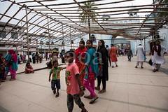 5D8_7253 (bandashing) Tags: family girls england people tree boys children manchester sharif women shrine muslim islam headscarf hijab palm date niqab sylhet bangladesh socialdocumentary burkah mazar dargah aoa shahjalal bandashing akhtarowaisahmed