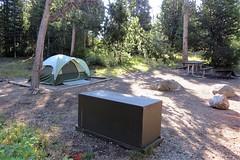 Our Campsite at Jenny Lake (Patricia Henschen) Tags: wyoming grandtetons campground grandtetonnationalpark jennylake