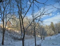 The calm before the storm (bankst) Tags: blue winter snow storm nature weather nikon snowstorm bluesky calm d5100 daarklandsgroup allnaturesparadise