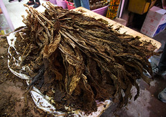 tobacco leaves sold in the bazaar, Hormozgan, Bandar Abbas, Iran (Eric Lafforgue) Tags: leaves shop horizontal shopping store leaf asia iran cancer middleeast persia nobody business indoors trading bazaar trade tobacco bazar nicotine persiangulf trader bandarabbas hormozgan   tobaccoleaves  iro straitofhormuz  colourpicture  iran034i1664