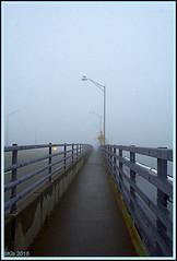 Foggy Atmosphere (Irina Kiseleva) Tags: bridge blue winter shadow ny black color bird lamp fog gray repetition farrockaway photoborder