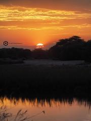 Sunset At The Okavango River (jan-krux photography - thx for 1.3 Mio+ views) Tags: africa travel sunset sky colors clouds river dark landscape evening abend reisen sonnenuntergang wolken olympus afrika fluss landschaft namibia scapes omd okavango farben em1 rundu nkwaziriverlodge
