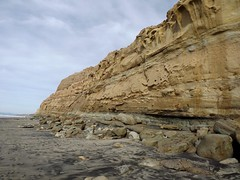 sea cliffs; Torrey Pines (h willome) Tags: ocean california beach torreypines sandiego torreypinesstatereserve 2016