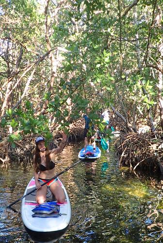 2_17_16 Kayak Paddleboard Tour Sarasota FL 11