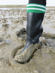Adventure in Cebo wellies (essex_mud_explorer) Tags: black socks creek mud boots rubber wellington wellingtonboots wellies mudflats muddy rubberboots gummistiefel wellingtons gumboots cebo muddyboots tidalmud footballsocks rubberlaarzen muddywellies