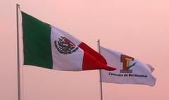Coacalco de Berriozbal (IV Regiduria Coacalco) Tags: bandera edomex estadodemxico coacalco areametropolitana osior coacalcodeberriozbal municipiodecoacalco osioreflex produccionesosior