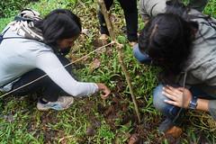 Biodiversity Assessment at Rainforest Retreat (mansi-shah) Tags: rainforest farming coorg madikeri forestecology mansishah rainforestretreat jenniferpierce ceptsummerschool
