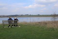 North Cave Wetlands (nataliemarchant) Tags: birds yorkshire eastyorkshire yorkshirewildlifetrust northcavewetlands