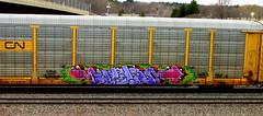 resa ONS (timetomakethepasta) Tags: cn train graffiti canadian national fart ons freight resa autorack