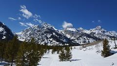 Grand Teton on the trail 1 (Aggiewelshes) Tags: travel winter snow mountains landscape scenery phone april snowshoeing wyoming jacksonhole s6 grandtetonnationalpark 2016 gtnp taggartlaketrail