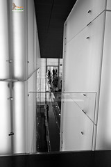 Gallary (Srujan Chennupati) Tags: people building glass museum architecture germany munich balcony tourists structure bmw visitors pillars gallary bmwmuseum scphotography srujanchennupati pixlsart